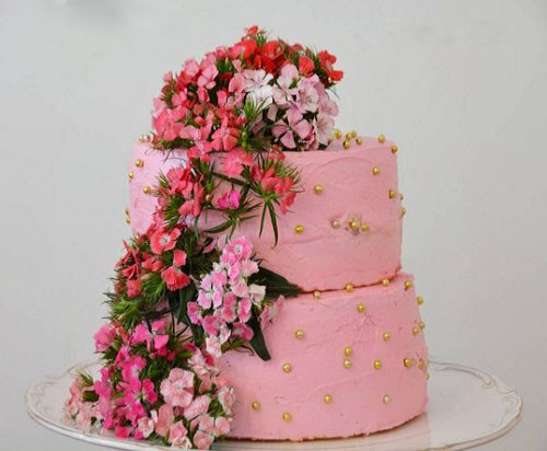 Doğum Günü Yaş Pastası